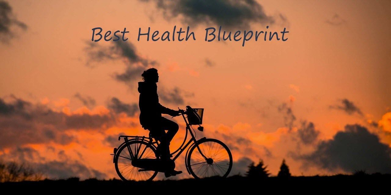 Best Health Blueprint Banner Logo 2